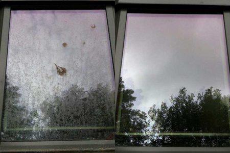 Omega Window 2